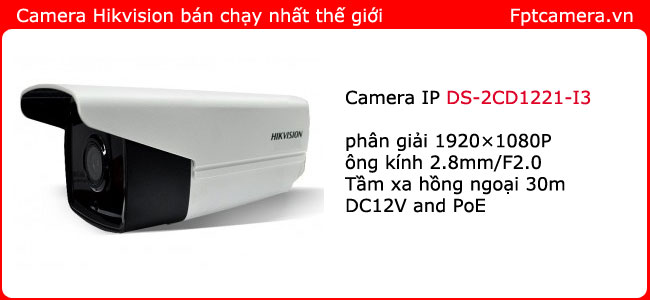 lap-dat-camera-ip-hikvision-DS-2CD1221-I3