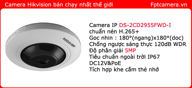 lap-dat-camera-ip-hikvision-DS-2CD2955FWD-I