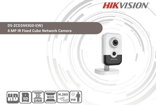 catalog camera DS-2CD2443G0-IW