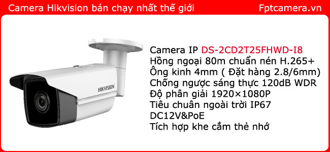 lap-dat-camera-ip-hikvision-DS-2CD2T25FHWD-I8